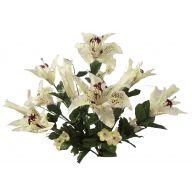 X14 Tiger Lily Bush w / Gyp - White