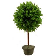 "13 "" X 22 "" H Boxwood Topiary - Green"