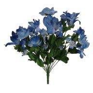 X 14 Rose Bush - Williamsburg Blue