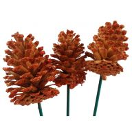 "18 "" Stem With Glittered Pine Cone ( 3 Stems Per Bunch ) - Natural / Orange"
