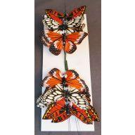 """4 """" Asst Feather Butterfly ( Bx 12 ) - Cream / Orange"""