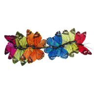 "2.5 "" Assorted Feather Butterfly ( Bx 12 )"