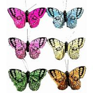 """3.5 """" Butterfly 2 x 3.5 x 0.75 ( 6 colors per box )"""