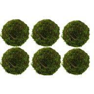 """Set of 6 3.5 """" Moss Balls"""