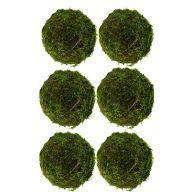 """Set of 6 4.75 """" Moss Balls"""