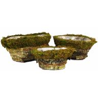 S/3 Oval Birch Peel Moss Basket