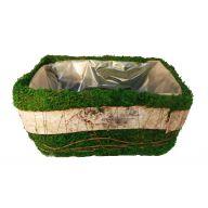 Single Moss & Birch Bark Basket W / Liner