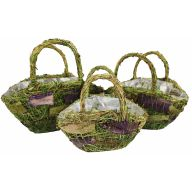 Purple Grass Basket w / Liner