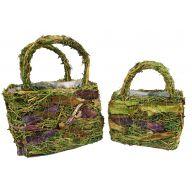 S/2 Grass Purple Birch Basket W/ Liner