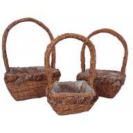 S / 3 Rattan Baskets Silver Pinecones W Liner