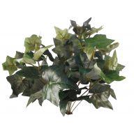 X12 Puff Ivy Bush