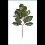 """29 """" Magnolia Leaf Stem w / 15 Leaves"""