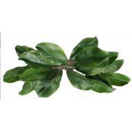 """20 """" Magnolia Swag 18 Leaves"""