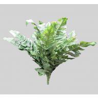 X 15 Broad Leaf Fern - Green