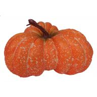200mm X 100mm Cheese Pumpkin - Orange