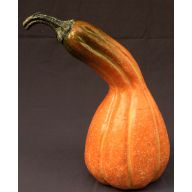220 mm x 120 mm Gourd