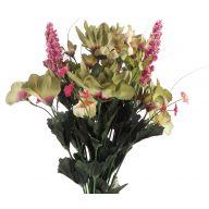 X14 Dahlia Lily Morning Glory Mix - Green / Mauve