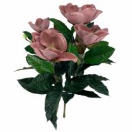 X8 Magnolia Bush - Dusty Rose