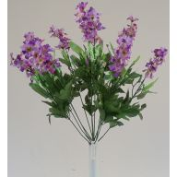 Lavender / Purple