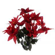 X14 Poinsettia Bush - Red
