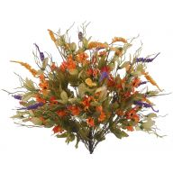 X24 Daisy Circle Heather Coral Grass Mix - Orange