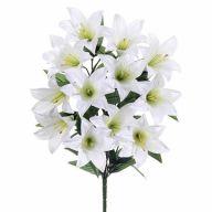 X12 Easter Lily Bush