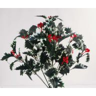 X12 Holly Berry Bush - Varigated Green