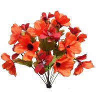 X 14 Poppy - Orange Combo