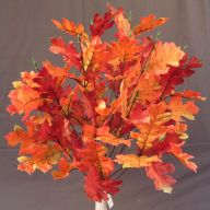 X 24 Oak Leaf Printed