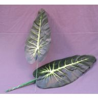 "19 "" Nephthytis Leaf - Green"