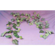 5 ' English Ivy Garland 85 Leaves