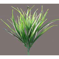 X 7 Spider Grass