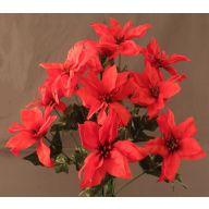 X 14 Poinsettia - Red