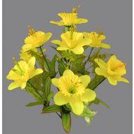 X 9 Daffodil - Yellow