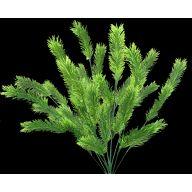 "17 . 5 "" H X12 Plastic Pine Bush"