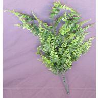 "X 6 Creek Fern 24 "" - Green"