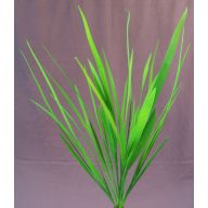 X 5 Wide Leaf Grass - Green
