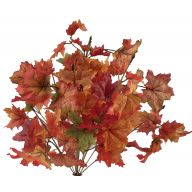 X14 Maple Leaf - Orange