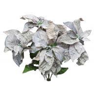 X 5 Poinsettia - Gray / Silver