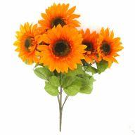 X6 Sunflower