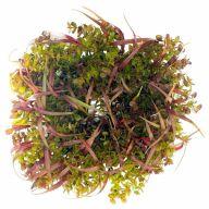 """24"""" EUCALYPTUS GRASS MIXED WREATH W/ LASER GLITTER"""
