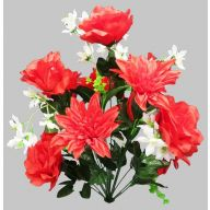 X 18 Rose Dahlia Bush - Red / White