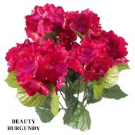 Beauty / Burgundy