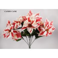 X7 Printed Velvet Poinsettia - Candycane