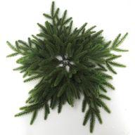 "28"" PVC Star Wreath"