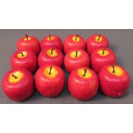 "5.5 "" Dia Apple ( 12 Per Pack / Sold by Pack Only )"