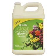 Crowning Glory - 1 Gallon