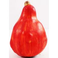 100MM FALL GOURD - RED / ORANGE