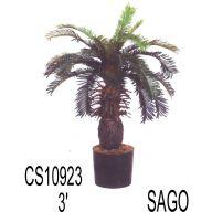 3' SAGO PALM TREE W/POT