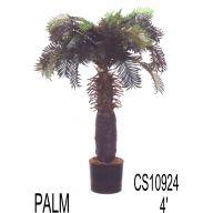 4' CYCAS PALM TREE W/POT (SHIP PALLET ONLY)